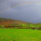 Rainbow - Ireland by Honor Kyne