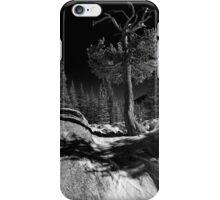 """Limber Pines RMNP #2 "" iPhone Case/Skin"