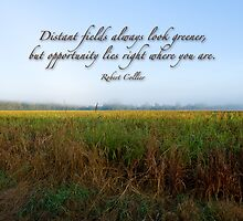 Distant fields . . . by Bonnie T.  Barry