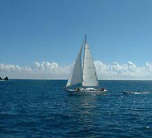 Sailing! by Linda Jackson