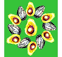 Avacado Flower  Photographic Print