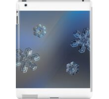 Snowflake collage: crystals of day and night iPad Case/Skin