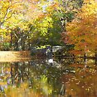 Autmun Pond and Bridge by Stormoak Lonewind