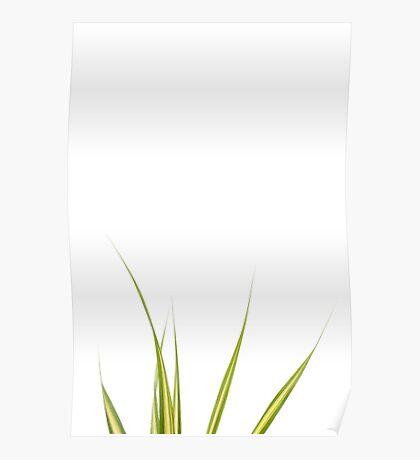 Blades of Grass #3 Poster
