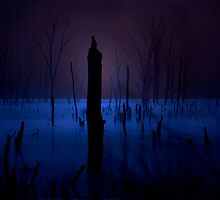 Hallowed Ground by Mary Ann Reilly