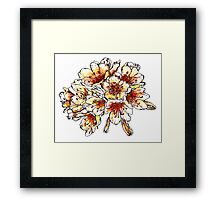 peach and orange flowers Framed Print
