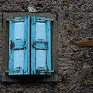 THE BLUE SHUTTERS by June Ferrol