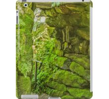 Down to the Leafy Glade iPad Case/Skin