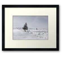 Winter Meadows Framed Print