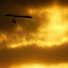 Hang gliding at sunset  by Of Land & Ocean - Samantha Goode