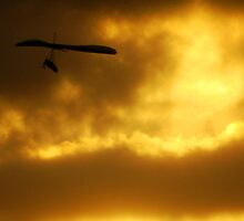 Hang gliding at sunset  by Of Land & Ocean - Samantha Goode