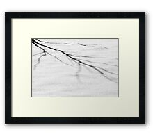 The Shadows of Winter Framed Print