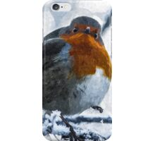 Artwork - Robin in the Snow iPhone Case/Skin