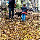 Walk On A Nature Path by Deborah  Benoit