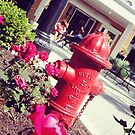 Roses by the Fire Hydrant v2 by amak