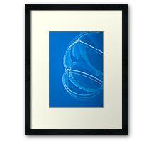 Bubble Bug Framed Print