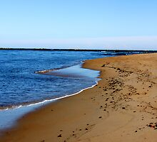 plum island beach by apageortwo