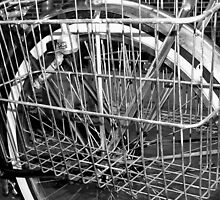 Basket Case by Clayton  Turner