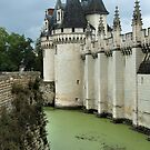 Castle's Defensive Moat by Anatoliy