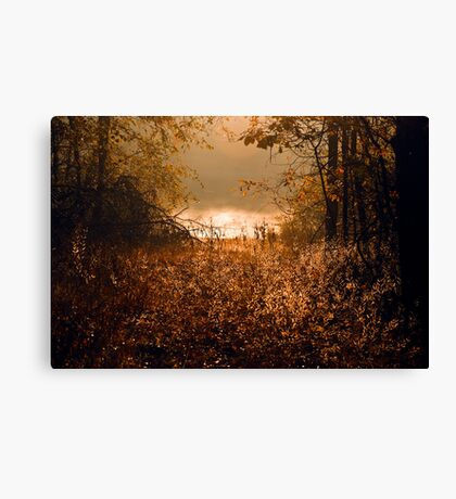 """""""Nothing Gold Can Stay"""" Canvas Print"""