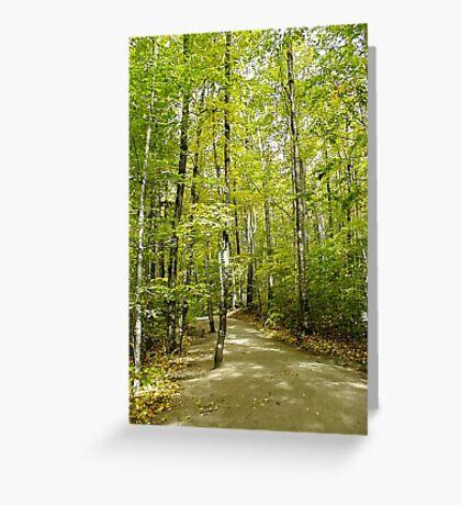 Franconia Gorge walk Greeting Card