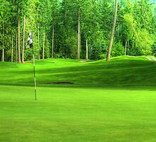 Golf Green by imarkimages