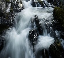 Deluge by Stephen Rowsell