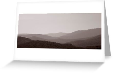 Yarra Valley by Rosina  Lamberti