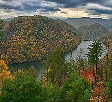 Autumn View by Patricia Montgomery
