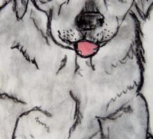 Puppy, Lab, Dog, Animal Sticker