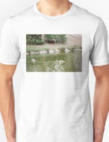 A Ponds View of Central Park NY Unisex T-Shirt