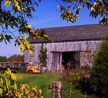 Country Barns by sheena2015