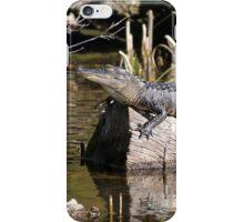 Gator Nap iPhone Case/Skin