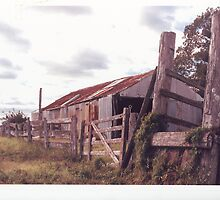 Rustic Shed by Terry Everson