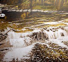 Long Pool, Liffey River by Richard Klekociuk