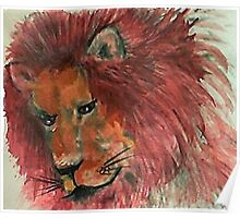 Male Lion laying down alone Poster