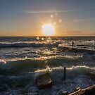 Good Morning Bronte by sharon2121