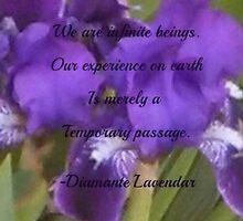 We Are Infinite Beings by Diamante Lavendar by DiamanteLavenda