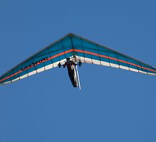 hang glider by marianne troia