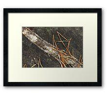 Rock Needles Framed Print