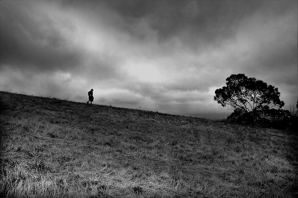 Lilly on the Bullock Track, Adelaide Hills, 2007 by John Shortt-Smith