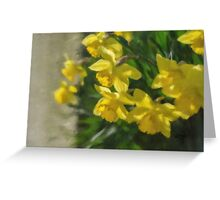 Peeking Greeting Card