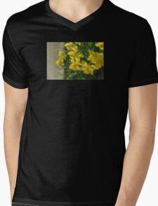 Peeking Mens V-Neck T-Shirt