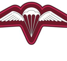 3 RAR wings Sticker