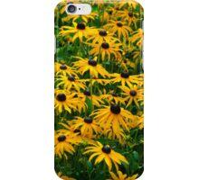 Black Eyed Daisies iPhone Case/Skin