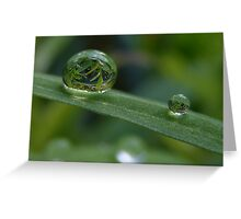 Green reflection Greeting Card