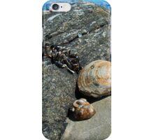 Hidden Sun Bathers iPhone Case/Skin