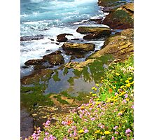 Coloured Moss Photographic Print