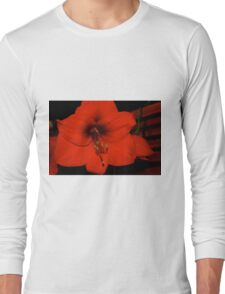 Christmas Amaryllis  Long Sleeve T-Shirt