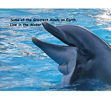 Some of the Greatest Minds on Earth, Live in the Water Photographic Print